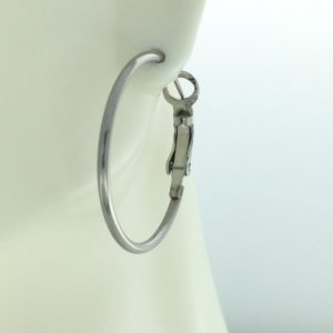 Silver Hoop Spring Catch 1 Inch Earrings – JA291SC